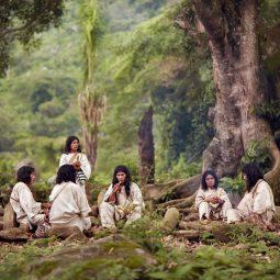 les kogis et la forêt-Atlaneastro
