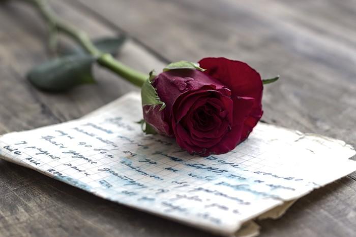 une rose rouge sur une lettre d'amour harmonieux Part.1-Atlaneastro