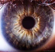 l'iridologie iris vu de très près Part.1-Atlaneastro