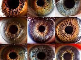 l'iridologie 9 vues grossies de l'iris Part.1-Atlaneastro
