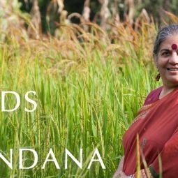 Vandana Shiva dans un champs sari rangé Part.1-Atlaneastro