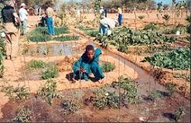 bien-vivre P. rabhi enseigne l'agrécologie Part.2-Atlaneastro